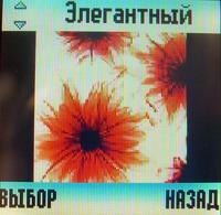 Экран Motorola W205
