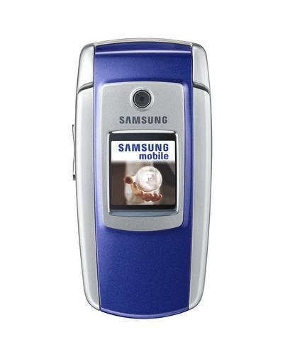 Samsung SGH-M300