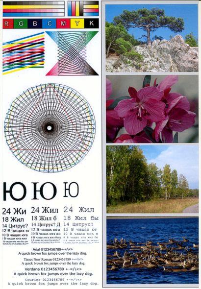 Образцы отпечатков Epson PictureMate PM290
