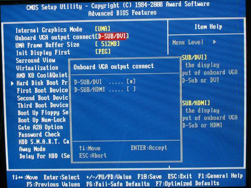 تقرير عن اللوحة الأم جيجابايت bios_video_output.jpg