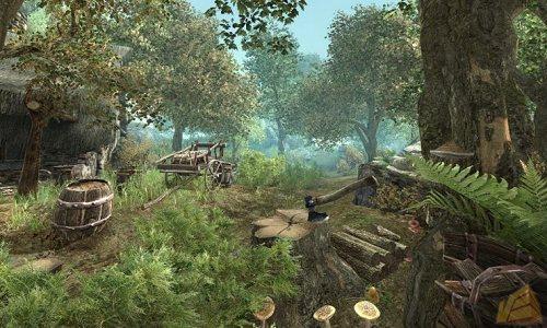 Первые скриншоты и подробности Gothic 4