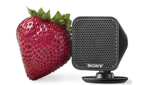 Sony_HST-S100_speaker