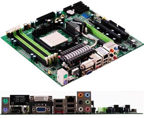 XFX GeForce 8200