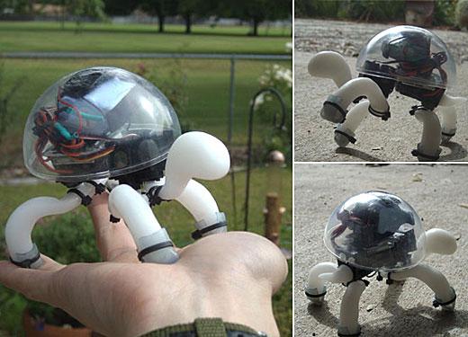 crabfu_tortoise_robot1