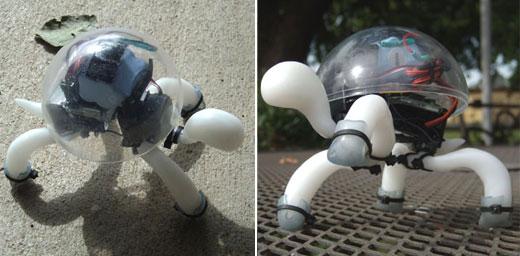 crabfu_tortoise_robot