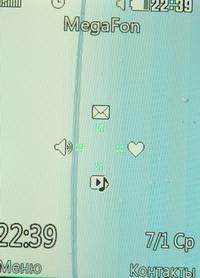 DSC_0335_resize.jpg
