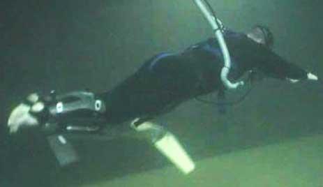 DARPA PowerSwim