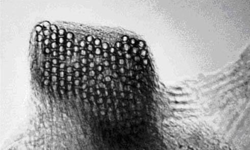 электронная бумага под микроскопом