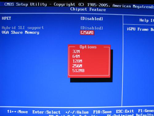 MSI P7NGM, объем памяти для GPU