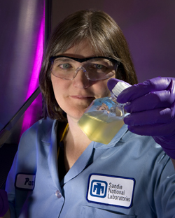 Биотопливо заменит собой 33% всего потребляемого в мире бензина