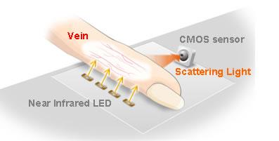 ...разработала компактный биометрический сканер, определяющий личность пользователя по расположению сосудов в пальце.
