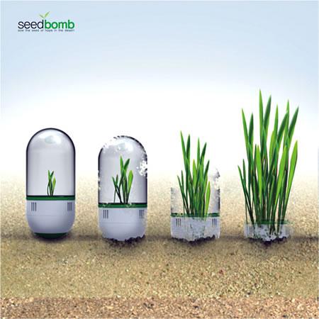 seedbomb2.jpg