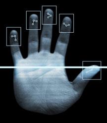 Биометрия ненадежна