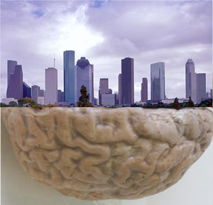 Города и мозг схожи