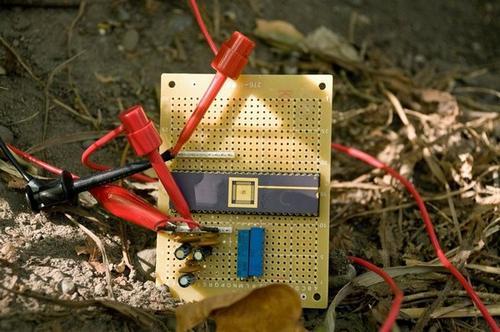 Исследователи создали электрическую схему, которая работает на энергии дерева.