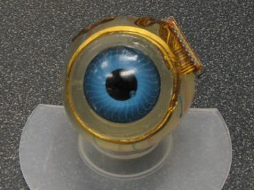 Глазной имплантат прошел испытания