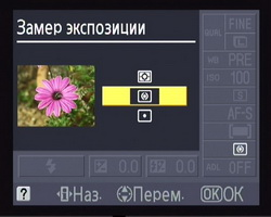 main_10.jpg