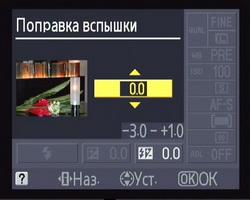 main_12.jpg