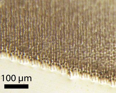 Солнечный элемент Caltech