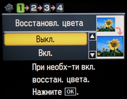 copy_11.JPG