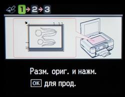 copy_14.JPG