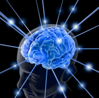 http://www.3dnews.ru/_imgdata/img/2010/09/28/599199/brain.jpg