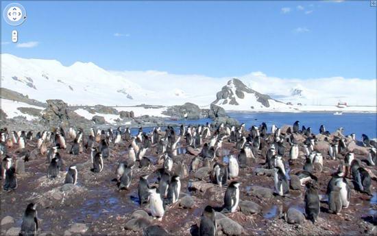 Street View, Антарктида