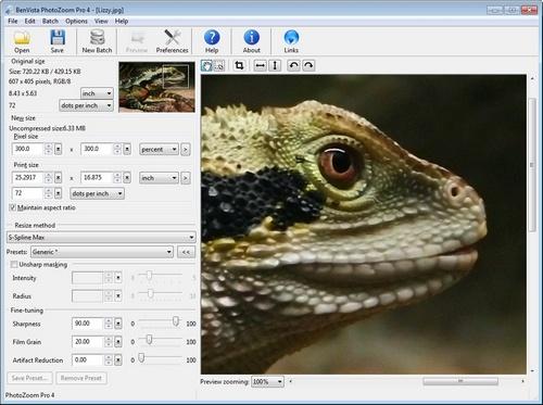 PhotoZoom дает возможность выбрать из десятка разных способов, среди которых