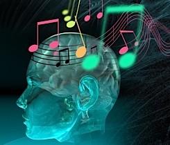 Нравится слушать музыку? Это все химия вашего мозга