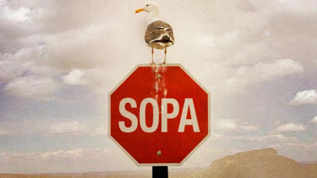 http://www.3dnews.ru/_imgdata/img/2011/12/30/622240/sopa-ACT.jpg