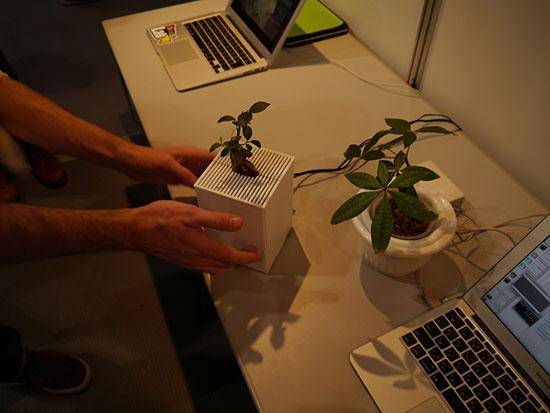 Интерактивные растения