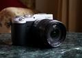 Обзор беззеркальной камеры Panasonic Lumix GX8: все и сразу