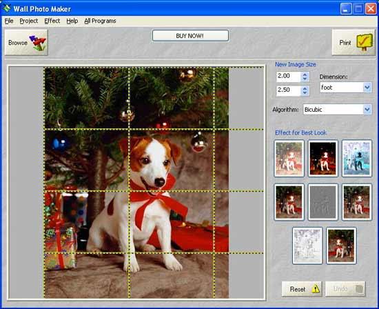 скачать программу для печати фотографий: