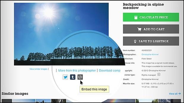 Фотобанк Getty Images разрешил бесплатное использование изображений