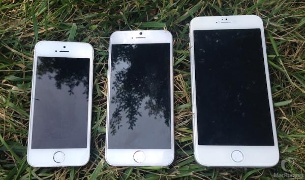 Продажи iPhone 6 начнутся в середине октября?