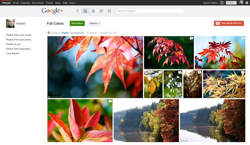 www.3dnews.ru/assets/external/illustrations/2014/08/02/825191/Google_plus_album_view%20(2).jpg