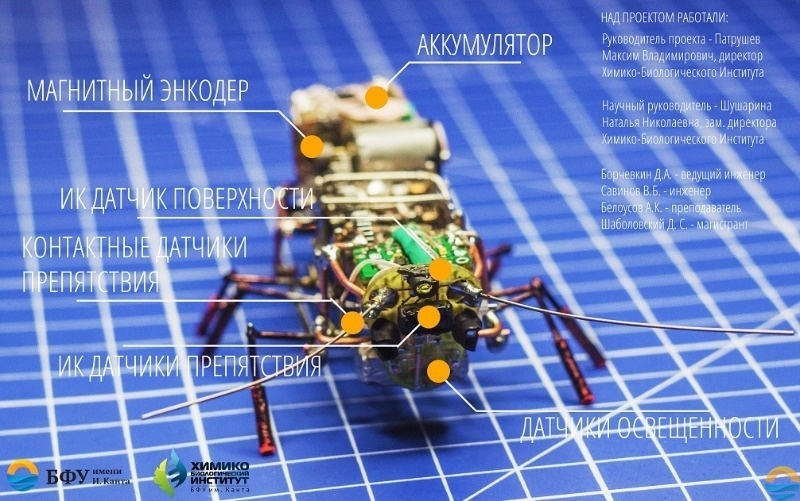 "В России создан робот-таракан, имитирующий повадки насекомого"""
