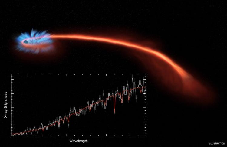 Видео дня: смоделированный NASA процесс поглощения чёрной дырой звезды