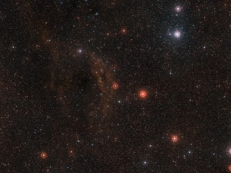 Широкоугольный снимок области неба вокруг VY Canis Majoris