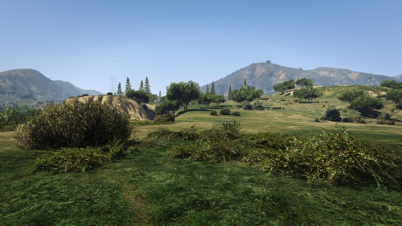 Grass Quality: Normal &quot;height =&quot; 450 &quot;width =&quot; 800 &quot;/&gt; </a></p> </div> </div> <div align=