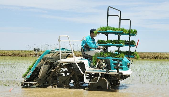 Kubota и оператор NTT разработают самоуправляемую сельхозтехнику
