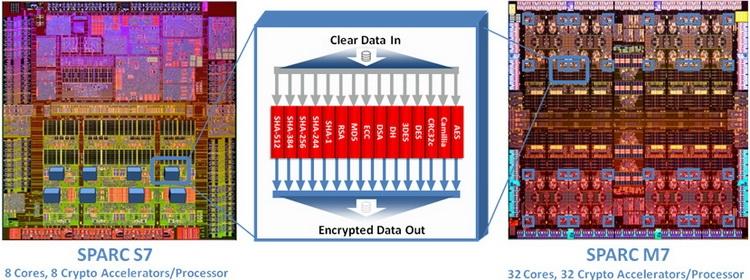 Криптографический ускоритель: он у новинки не один