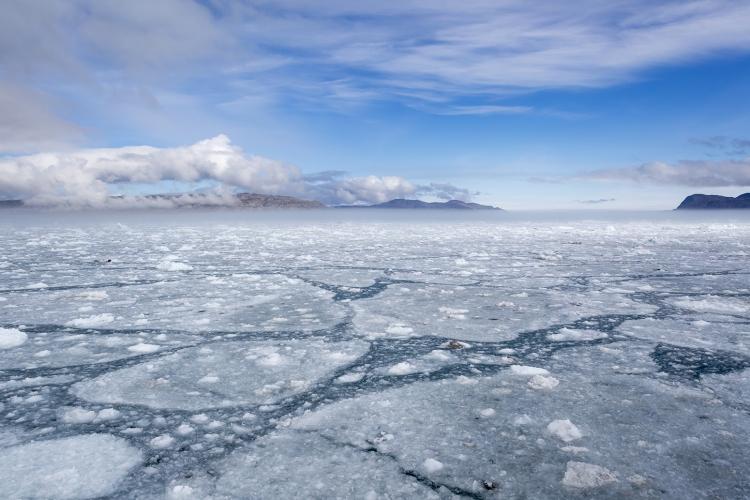 В Арктике запустят систему подводной навигации «Позиционер»