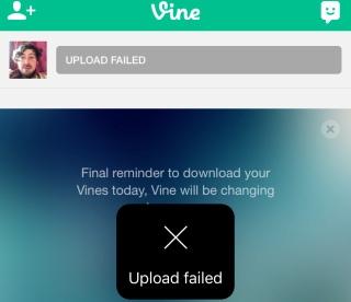 "Vine умерла — да здравствует Vine Camera"""