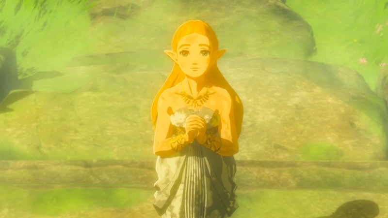 Zelda from Breath of the Wild is one of the most successful designs in the series. She&#39;s so sad and sweet &quot;height =&quot; 450 &quot;width =&quot; 800 &quot;/&gt; </a></p> <div class=