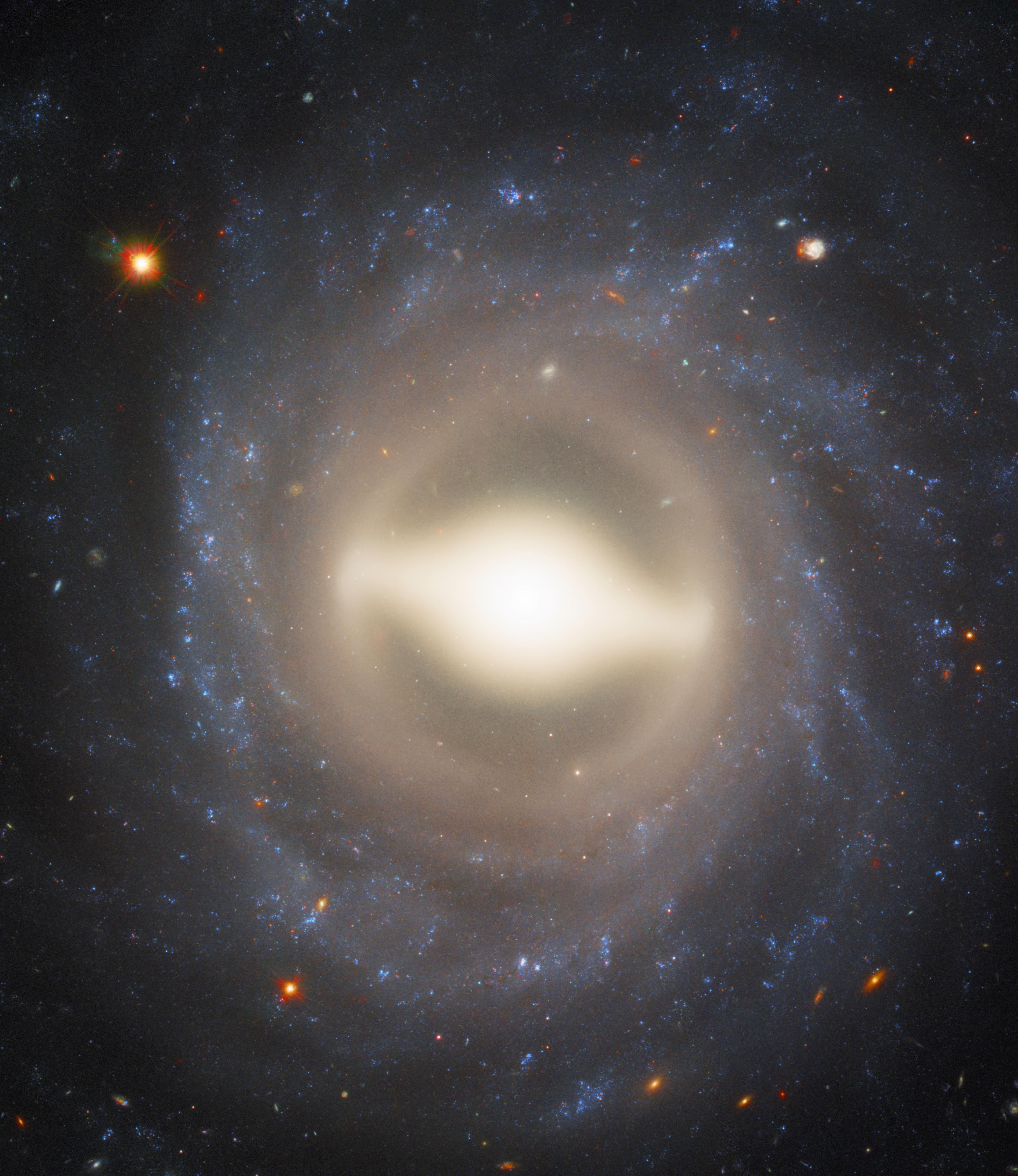 Фото дня: спиральная галактика с перемычкой в созвездии Кита