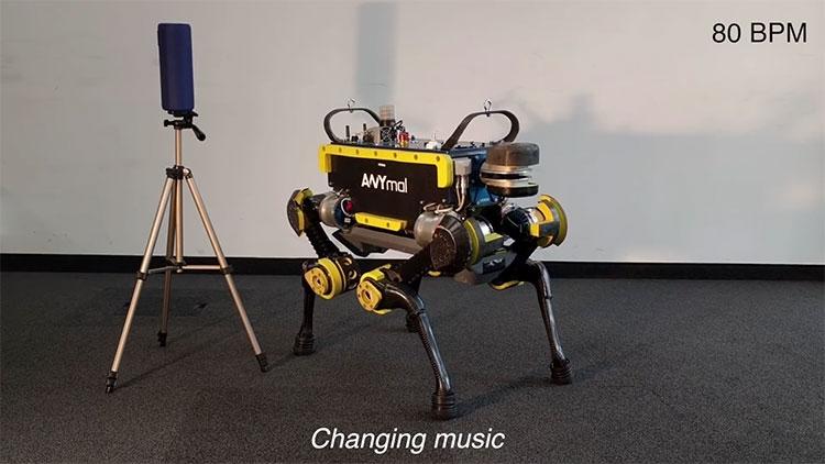 Видео: четвероногого робота обучили танцам