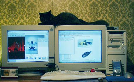 Как сделать две мышки на два монитора 653