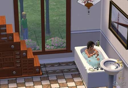 The Sims 2 - пикантные моменты.