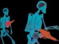 Кадр компьютерного рентгена из фильма